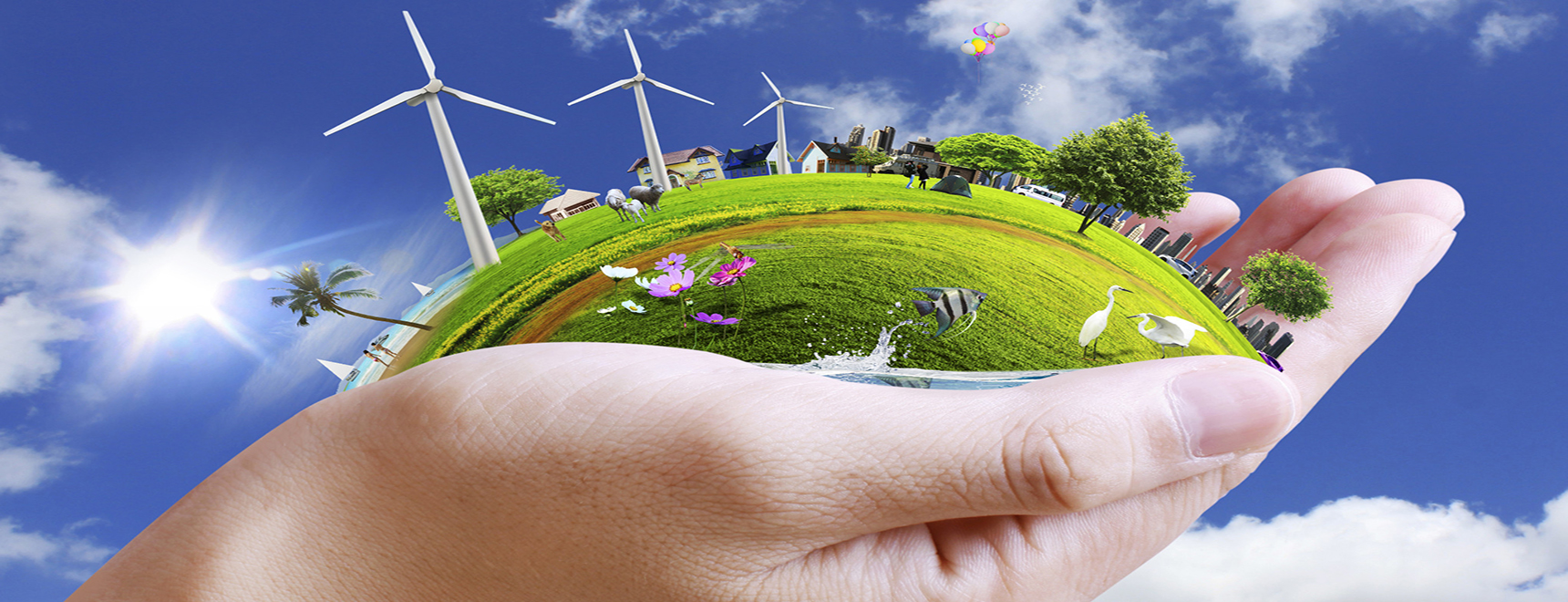 Our purpose is to work for the solution of environmental problems
